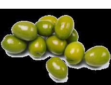 olive_lucarelli_sfondo1b