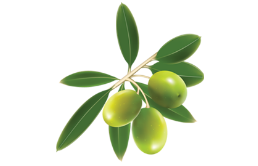 olive_lucarelli_sfondo1g