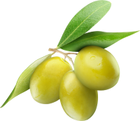 olive_lucarelli_sfondoh